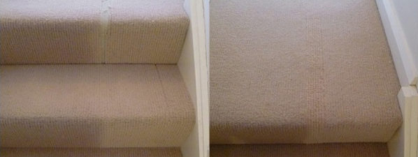 Residential Carpet Repairs Pet Damage