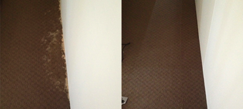 Excellent Repair to Carpet Water Damage Sydney